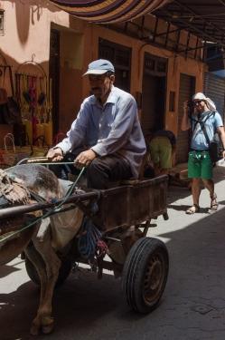 Marrakech-9942