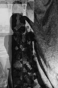 mimetismo-1834